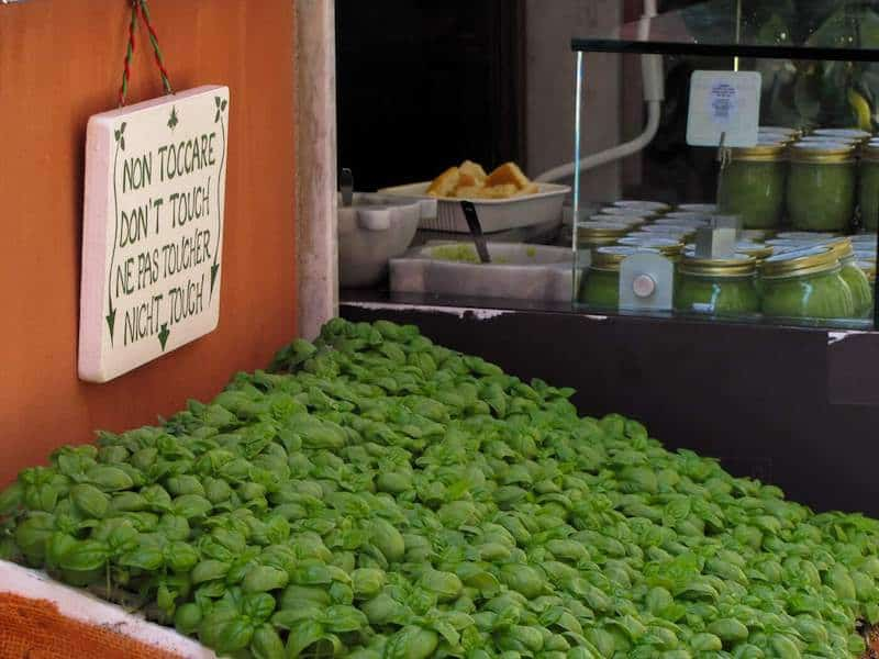 Pesto and basil for sale in Portovenere