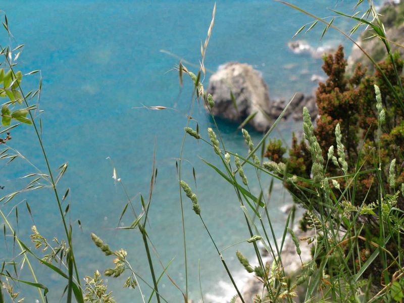 Hiking and Zen in the Cinque Terre