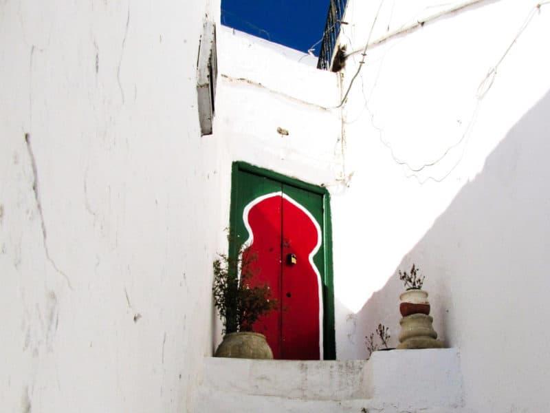 Exploring the beautiful blue and white streets of Sidi Bou Said through photos.