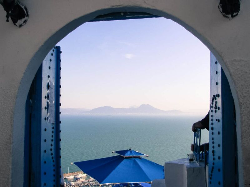 Exploring the beautiful blue and white streets of Sidi Bou Said through photos.