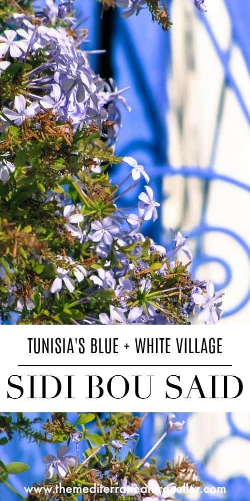 Blue jasmine and metalwork with text overlay 'Sidi Bou Said: Tunisia's Blue + White Village'