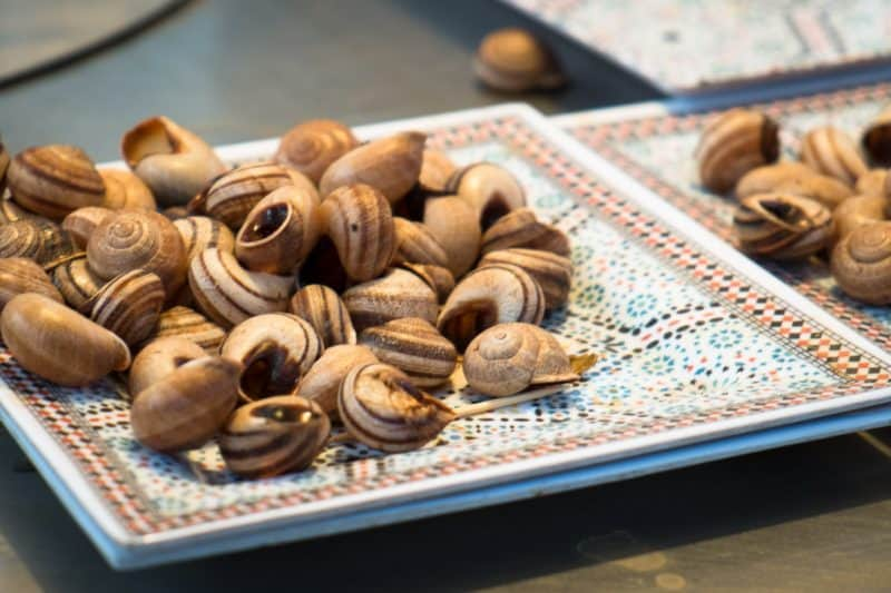 Snail shells | Marrakech: A Foodie's Guide