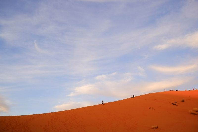 No Toilets in the Sahara