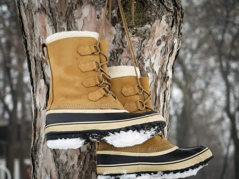 winter boots hanging from a tree by their laces