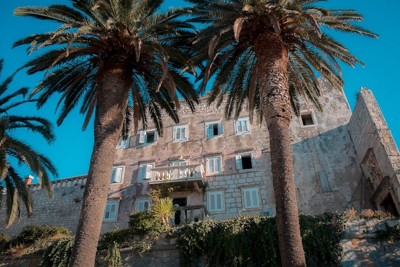 Palms and building exterior of Korcula old town