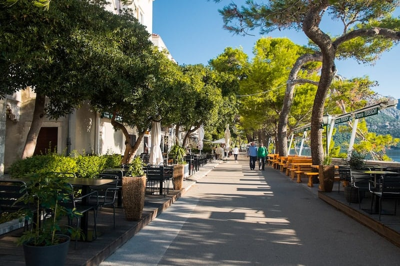 Korcula's tree-lined seafront promenade