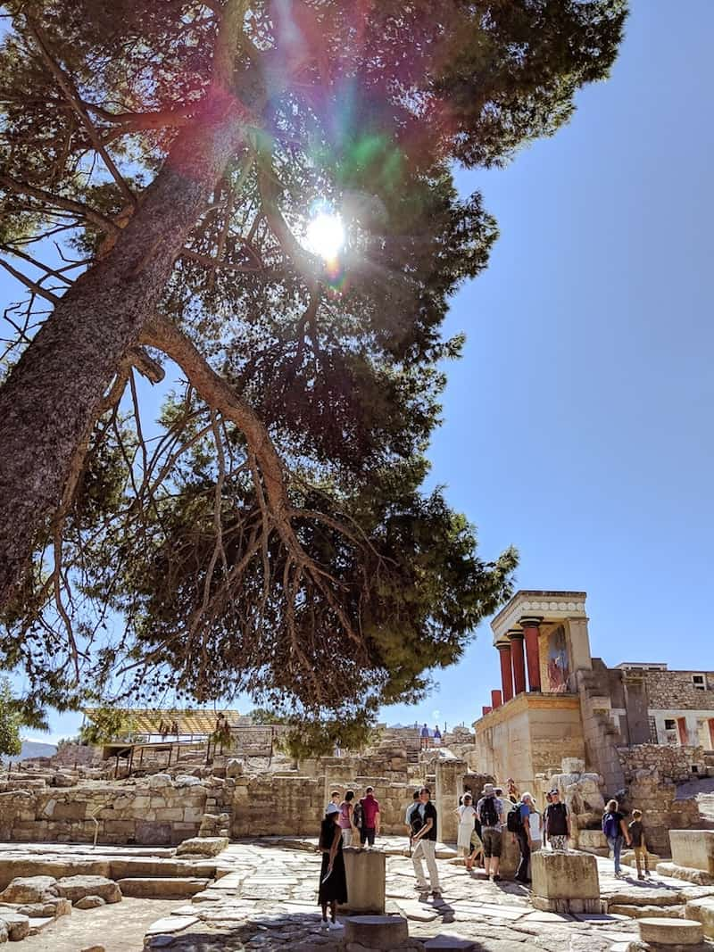 Sun behind trees at Knossos