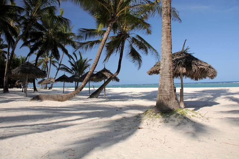 Shadows of palms on Kenya's Diani beach