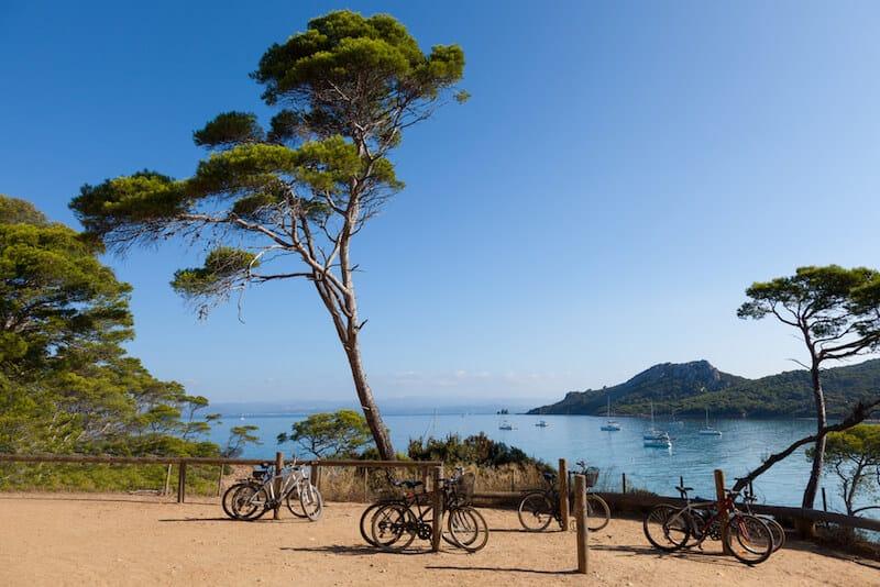 bikes underneath trees on Porquerolles