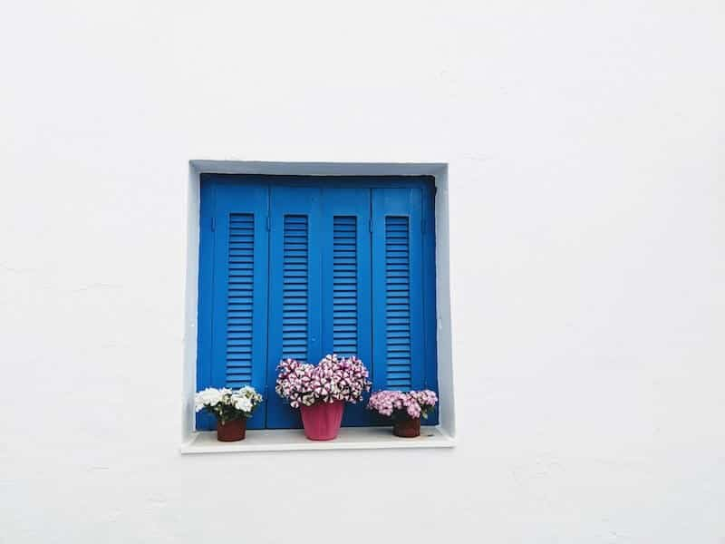 pretty blue shuttered window with flowers